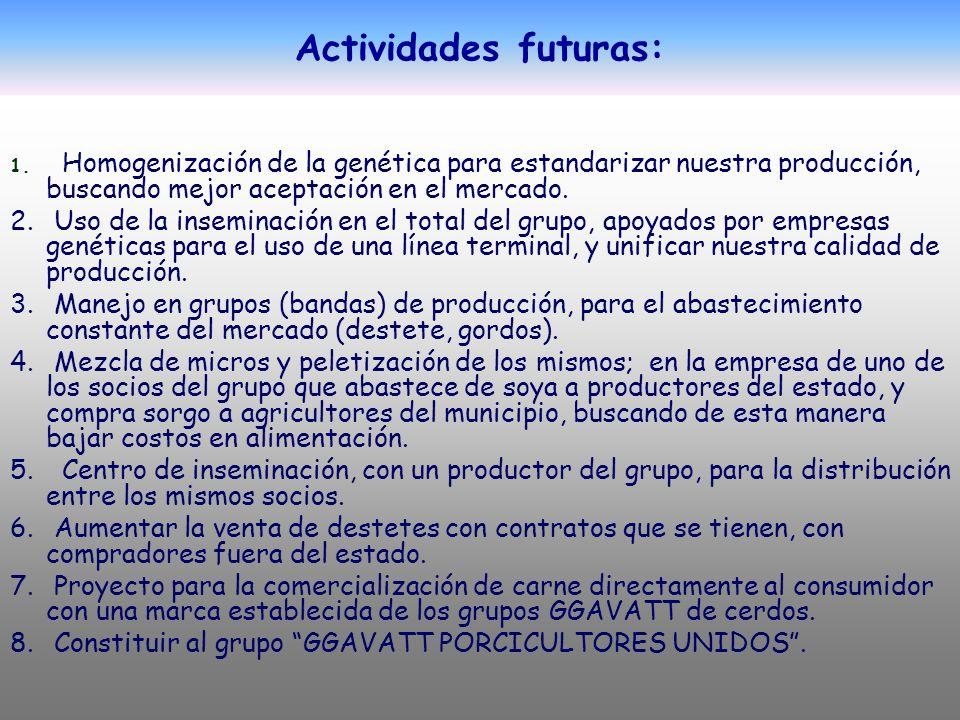 Actividades futuras: Homogenización de la genética para estandarizar nuestra producción, buscando mejor aceptación en el mercado.