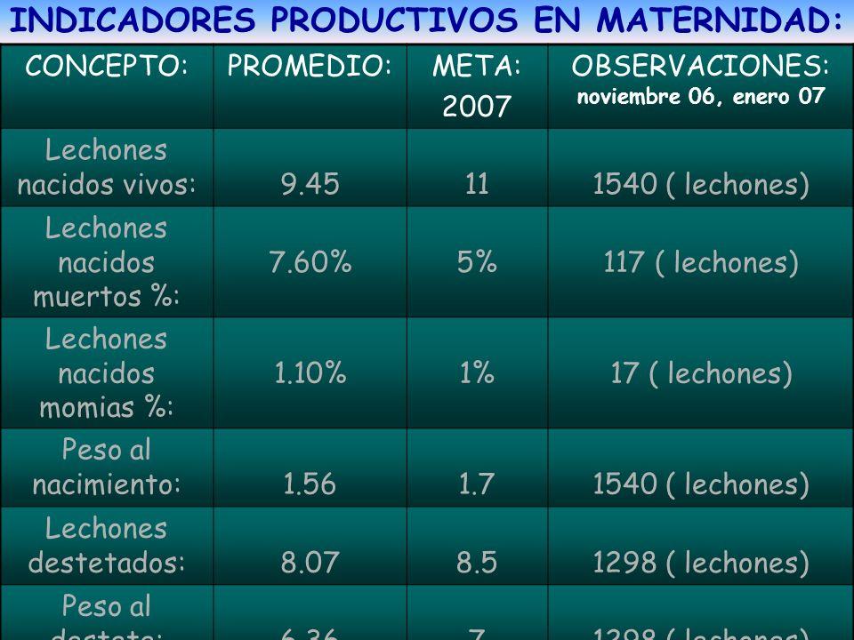 INDICADORES PRODUCTIVOS EN MATERNIDAD: