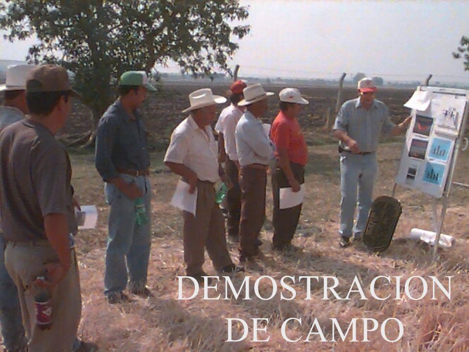 DEMOSTRACION DE CAMPO