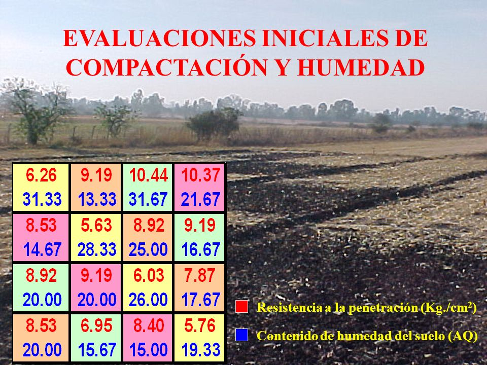 EVALUACIONES INICIALES DE COMPACTACIÓN Y HUMEDAD