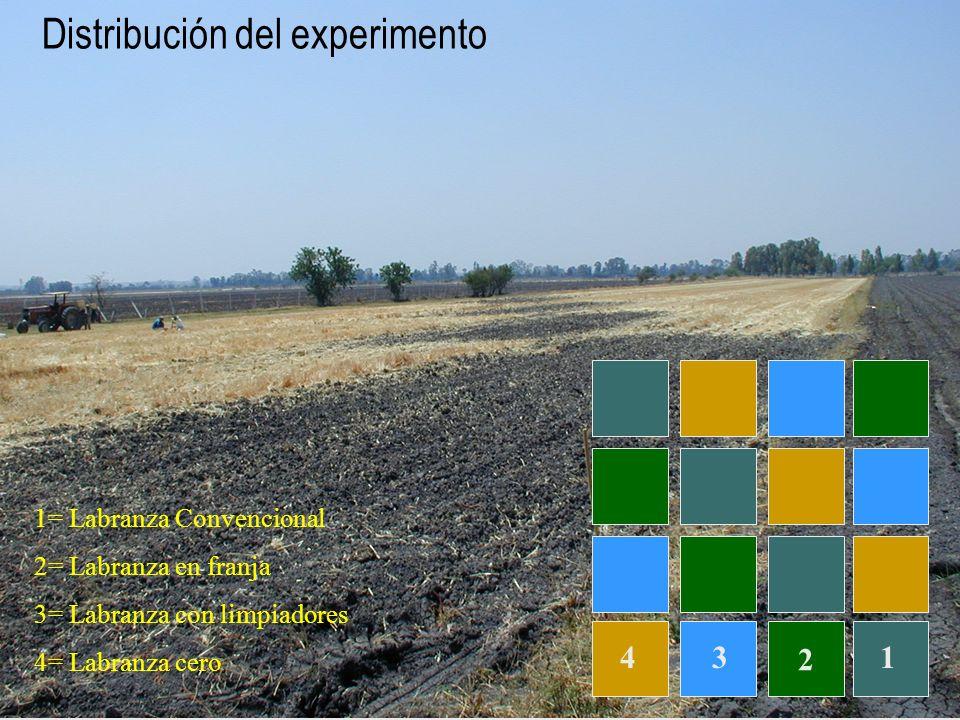 Distribución del experimento