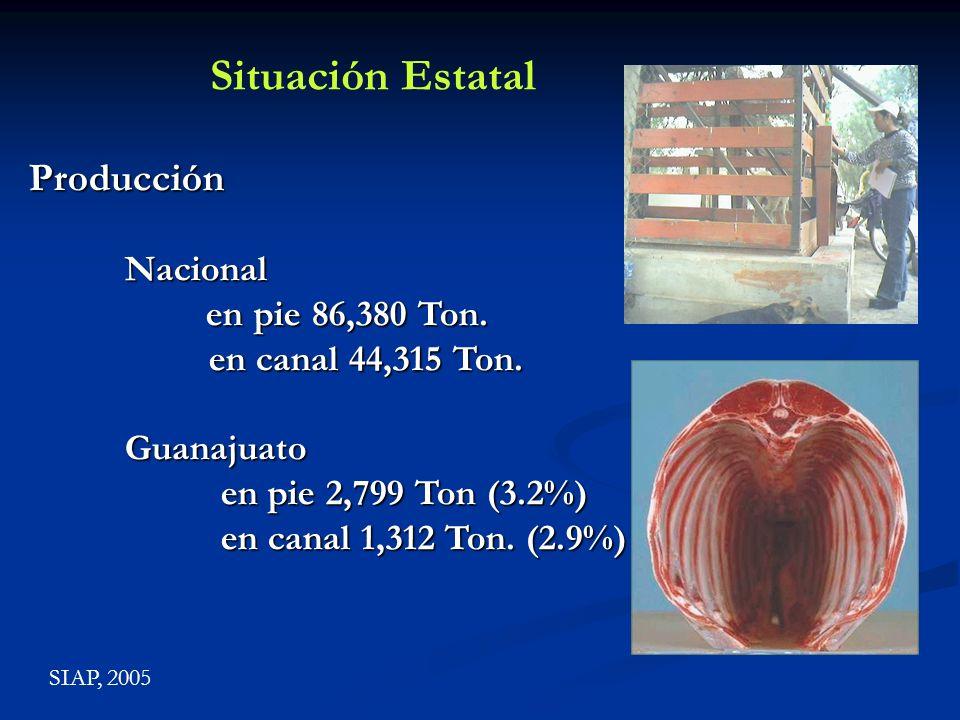 Situación Estatal Producción Nacional en pie 86,380 Ton.