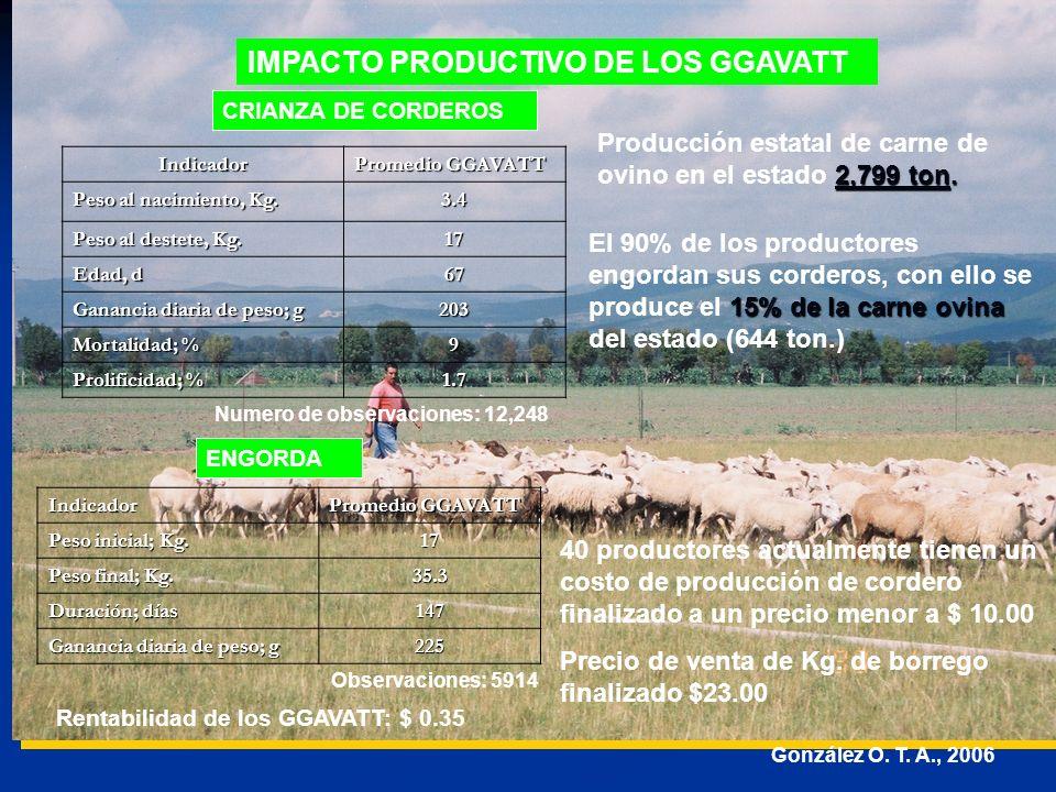 IMPACTO PRODUCTIVO DE LOS GGAVATT
