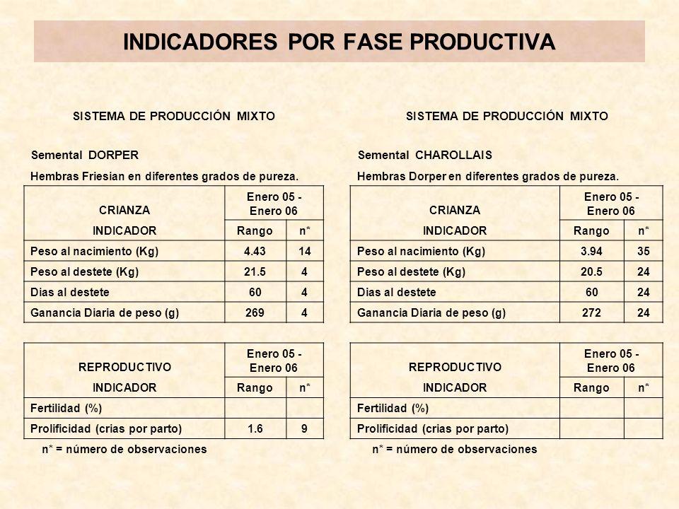 INDICADORES POR FASE PRODUCTIVA