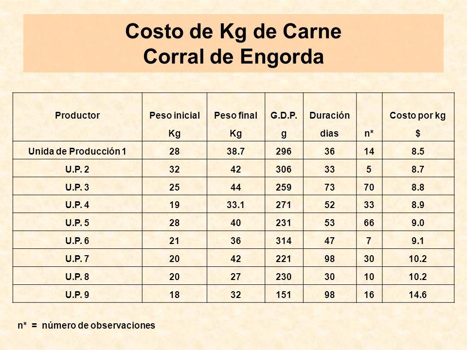 Costo de Kg de Carne Corral de Engorda