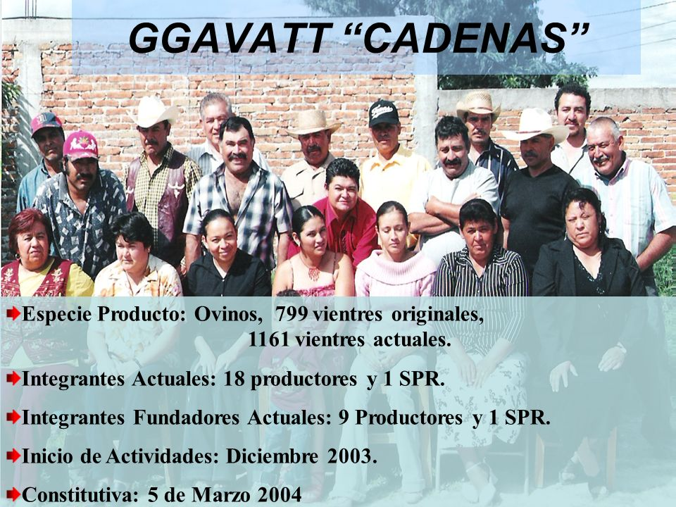 GGAVATT CADENAS Especie Producto: Ovinos, 799 vientres originales, 1161 vientres actuales.