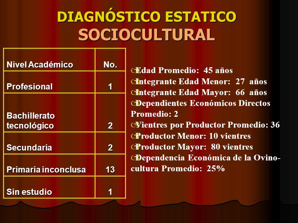 DIAGNÓSTICO ESTATICO SOCIOCULTURAL