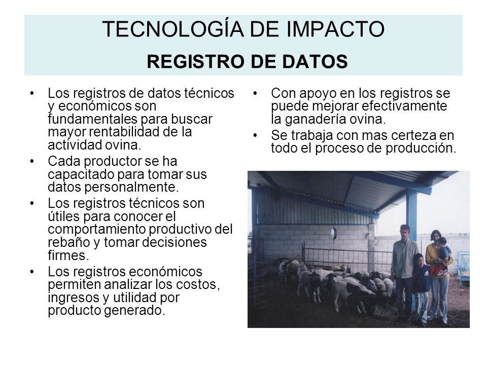 TECNOLOGÍA DE IMPACTO REGISTRO DE DATOS