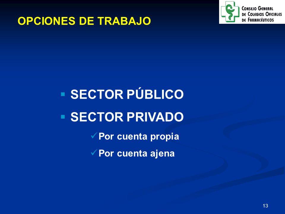 SECTOR PÚBLICO SECTOR PRIVADO OPCIONES DE TRABAJO Por cuenta propia