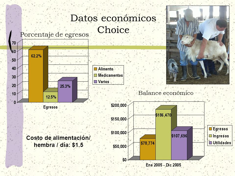 Datos económicos Choice