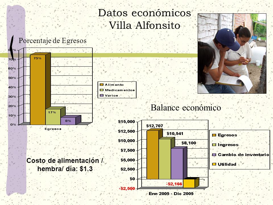 Datos económicos Villa Alfonsito