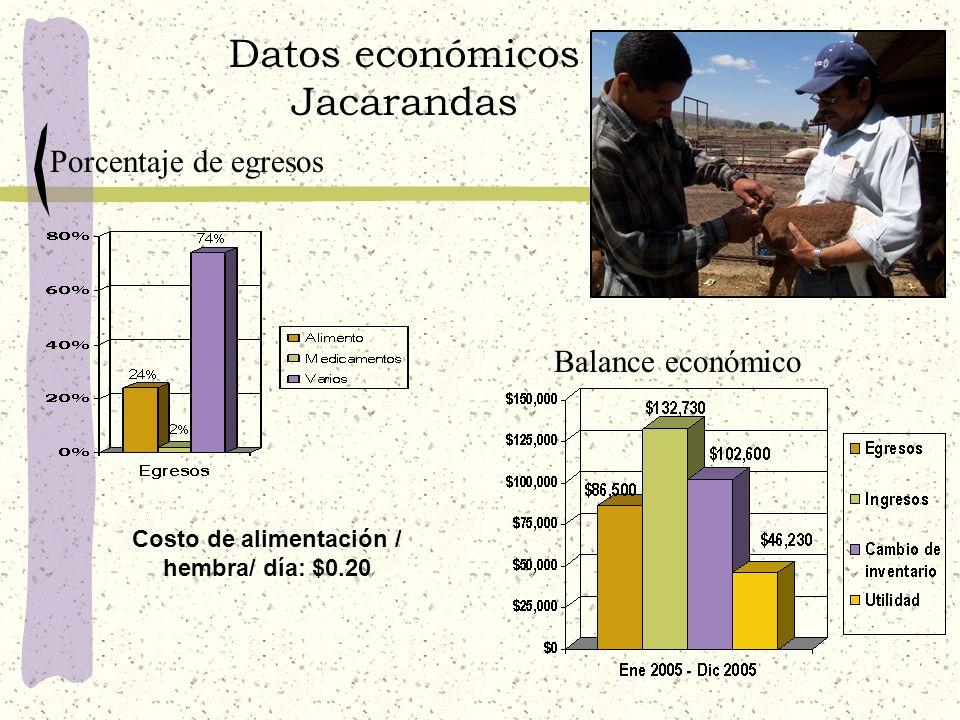 Datos económicos Jacarandas