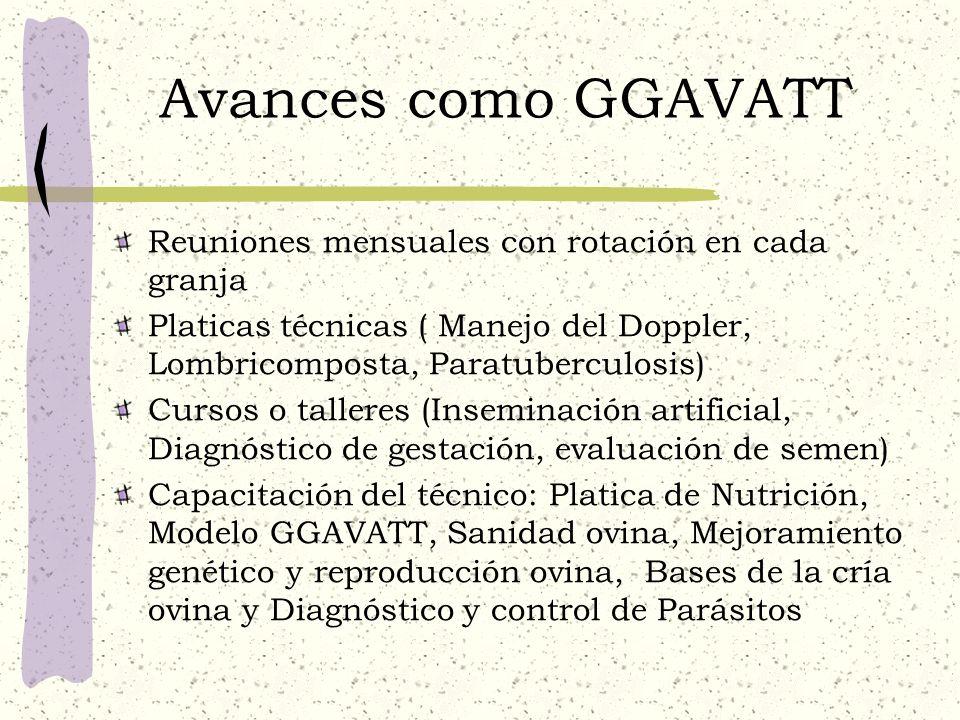 Avances como GGAVATT Reuniones mensuales con rotación en cada granja