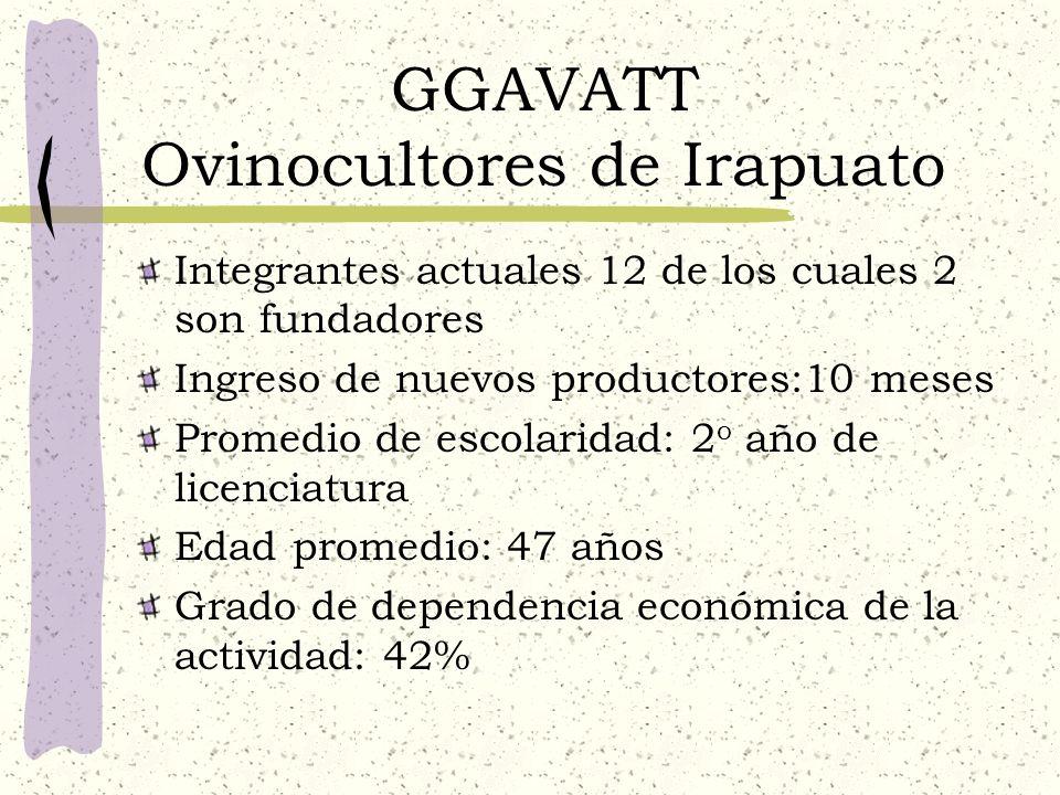 GGAVATT Ovinocultores de Irapuato