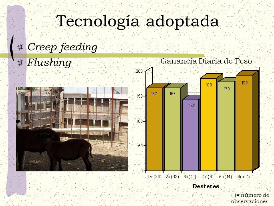 Tecnología adoptada Creep feeding Flushing Ganancia Diaria de Peso