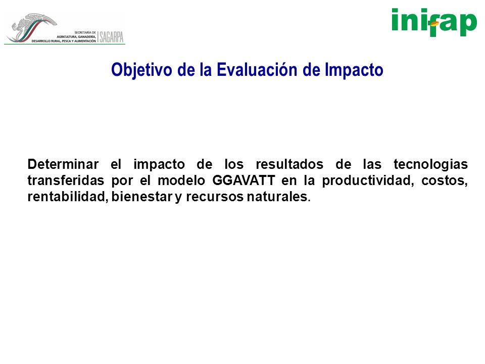 Objetivo de la Evaluación de Impacto