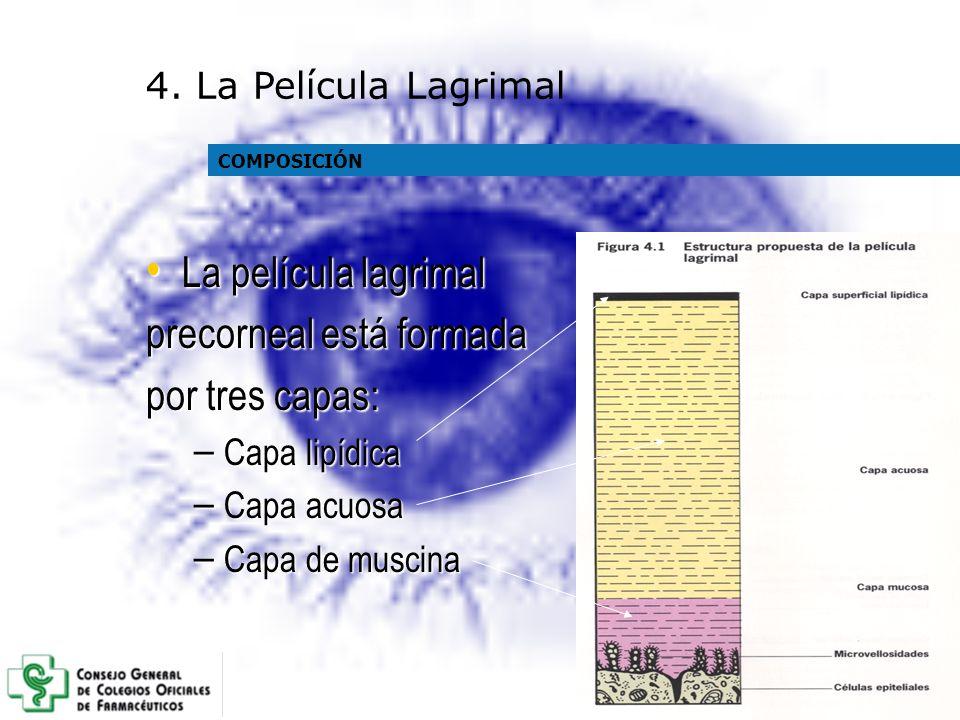 precorneal está formada por tres capas: