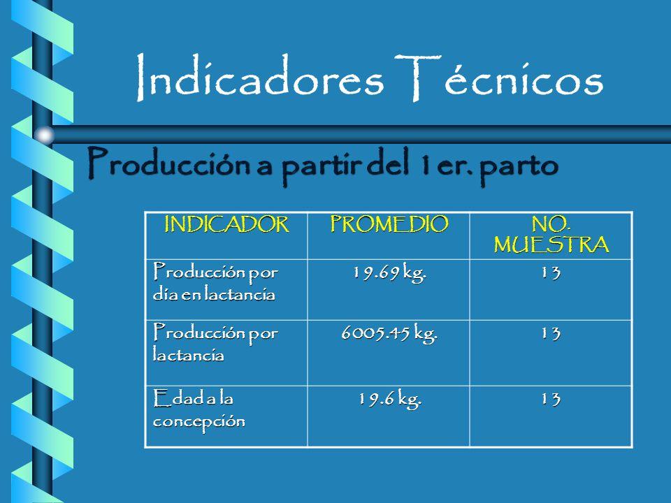 Indicadores Técnicos Producción a partir del 1er. parto