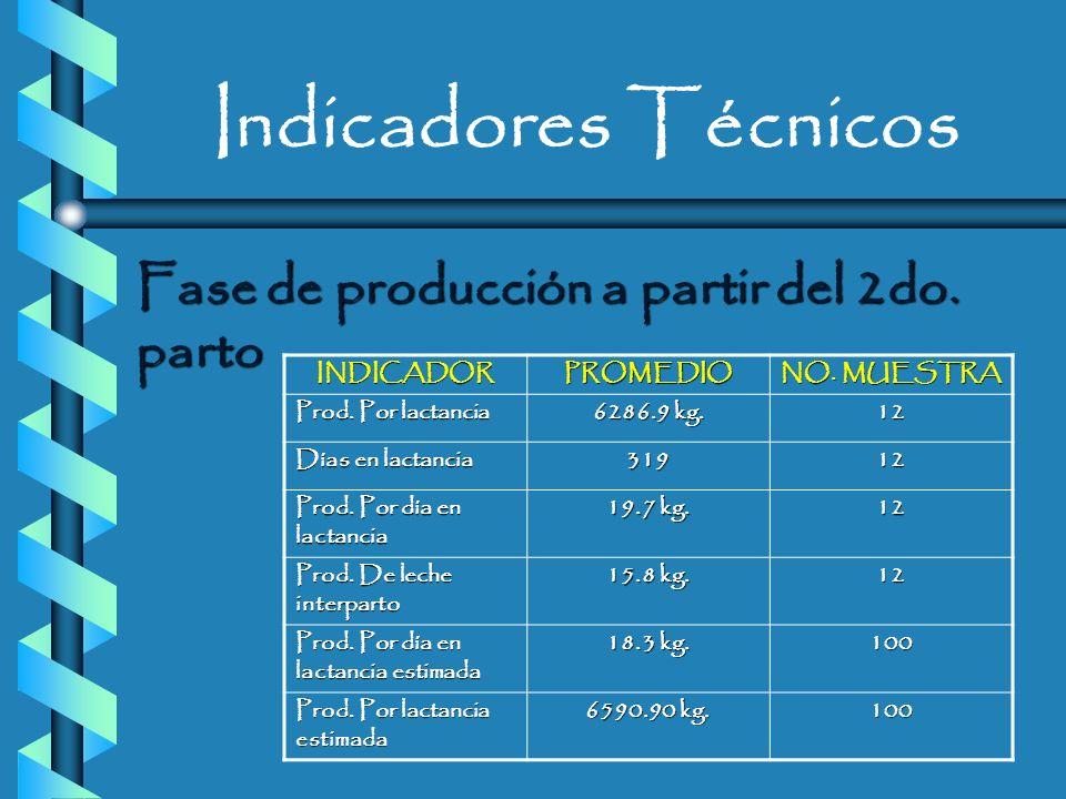 Indicadores Técnicos Fase de producción a partir del 2do. parto