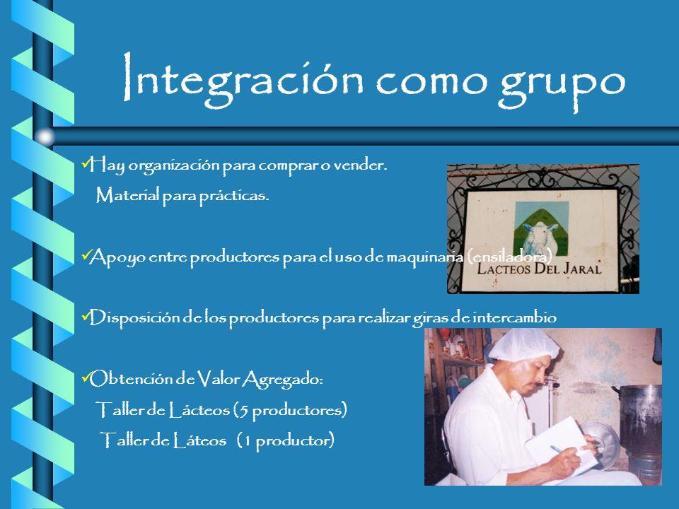 Integración como grupo