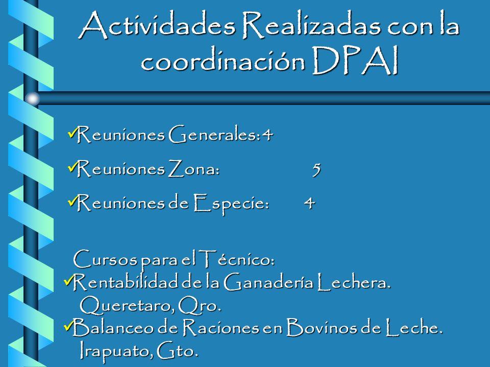 Actividades Realizadas con la coordinación DPAI