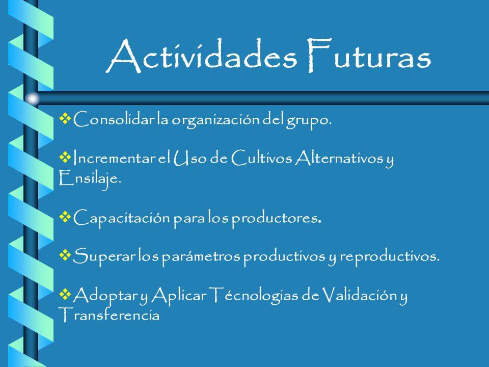Actividades Futuras Consolidar la organización del grupo.
