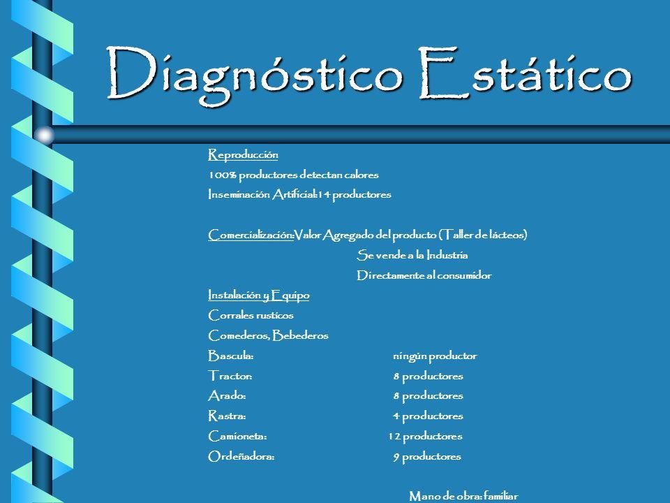 Diagnóstico Estático Reproducción 100% productores detectan calores