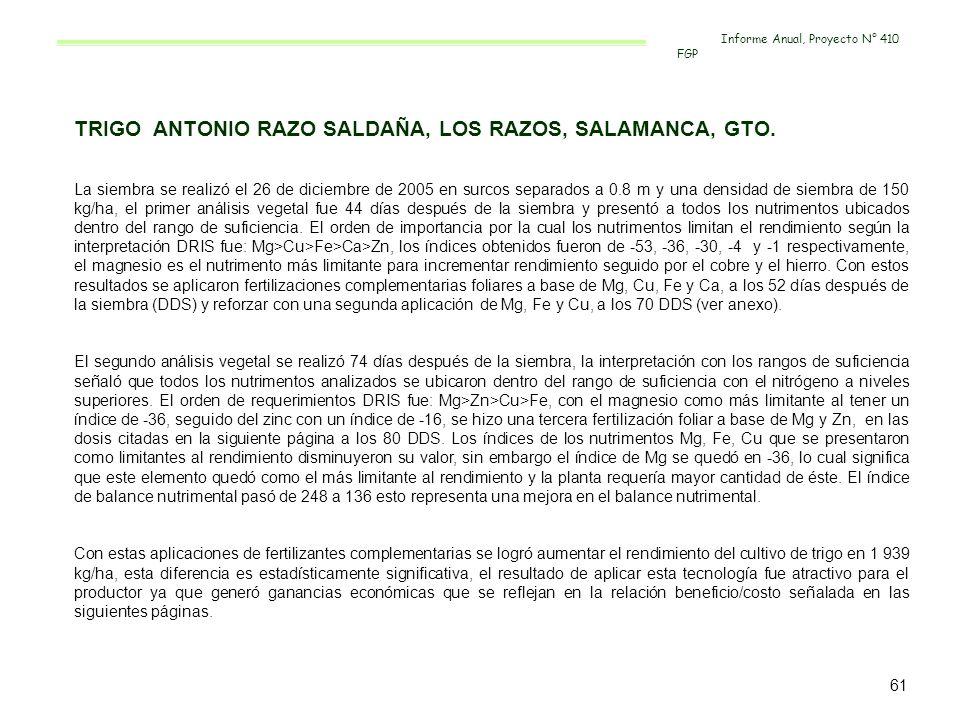 TRIGO ANTONIO RAZO SALDAÑA, LOS RAZOS, SALAMANCA, GTO.