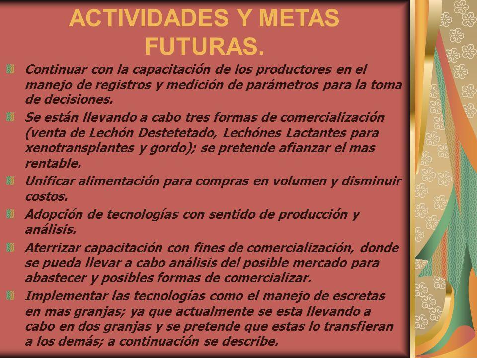 ACTIVIDADES Y METAS FUTURAS.