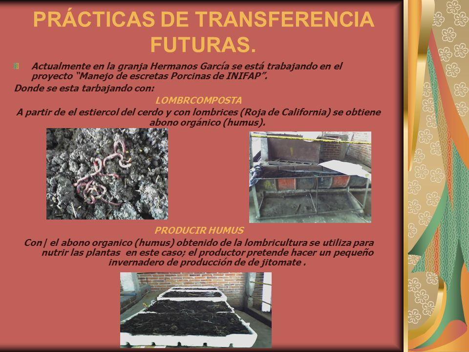 PRÁCTICAS DE TRANSFERENCIA FUTURAS.