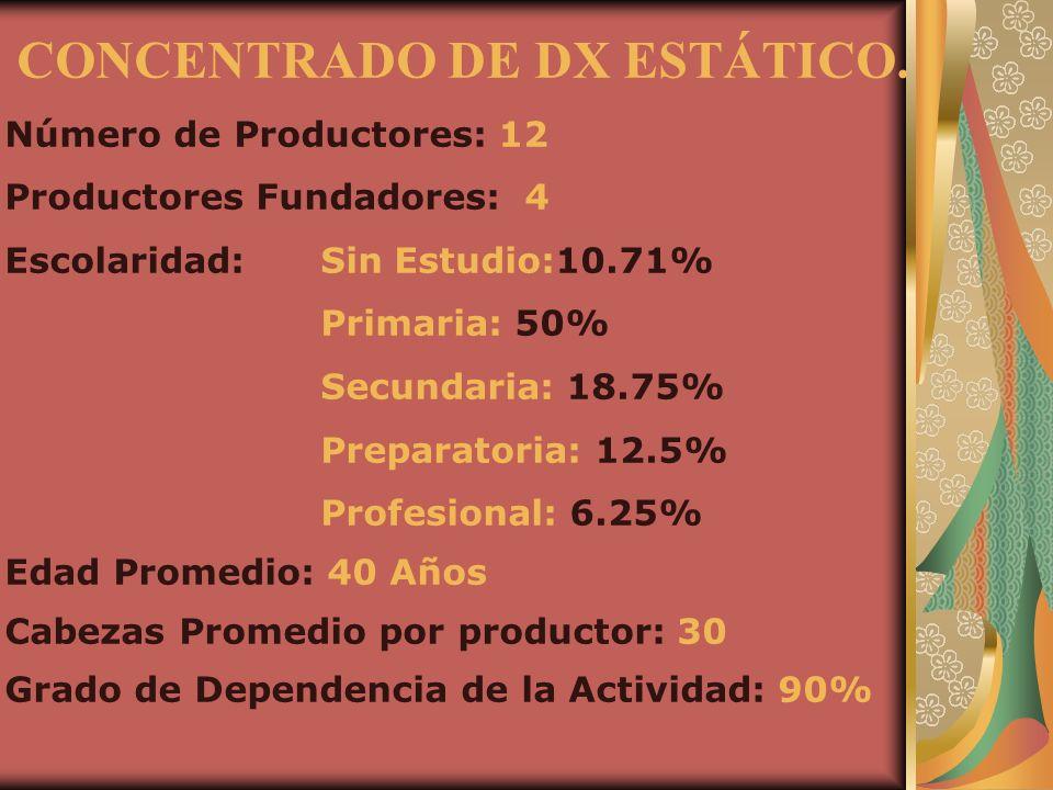 CONCENTRADO DE DX ESTÁTICO.