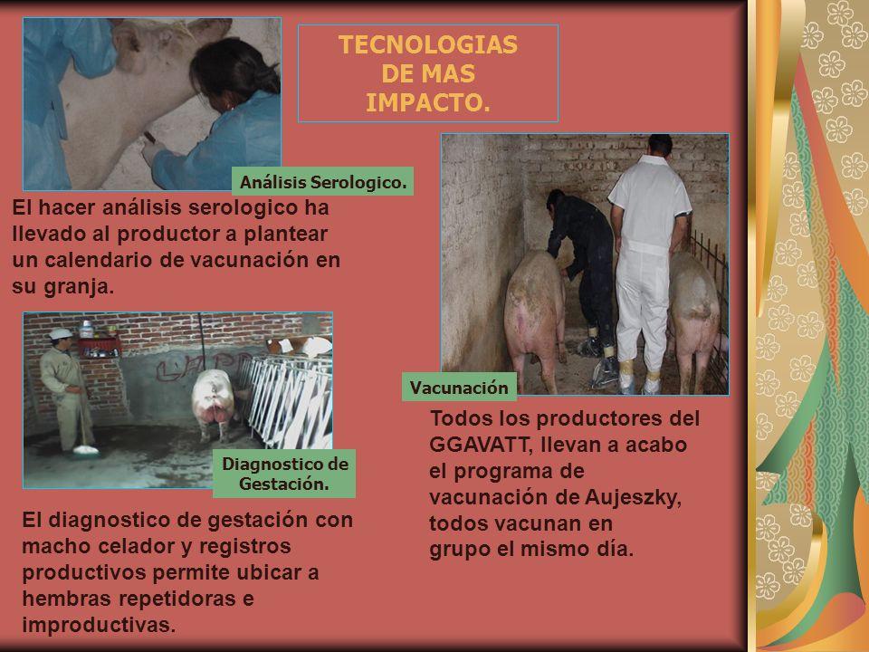 TECNOLOGIAS DE MAS IMPACTO.