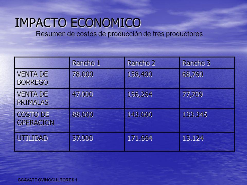 Resumen de costos de producción de tres productores
