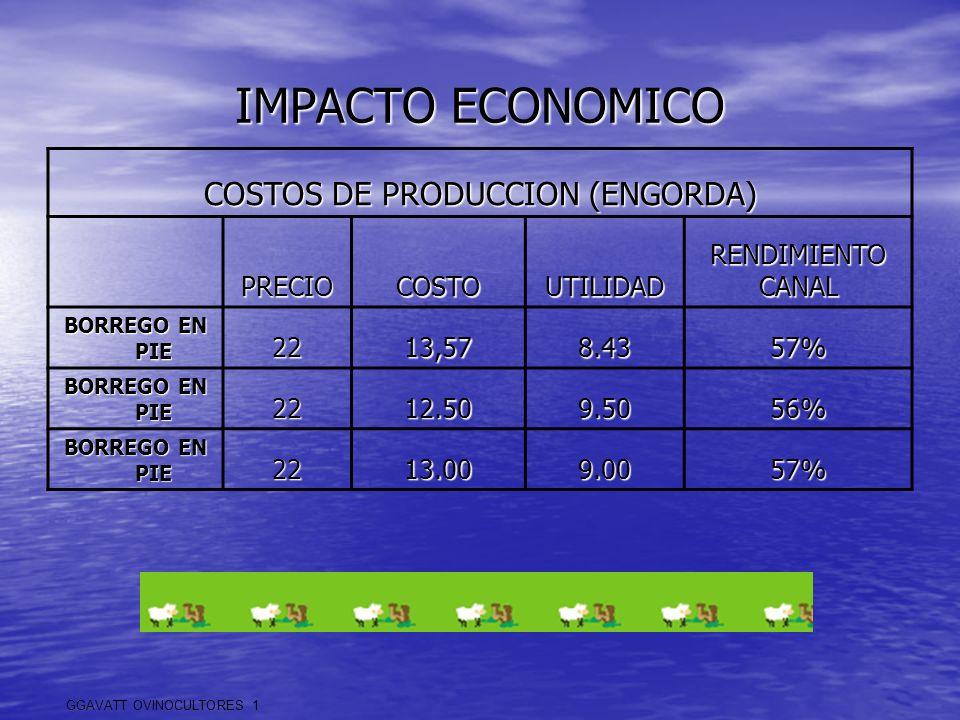 COSTOS DE PRODUCCION (ENGORDA)