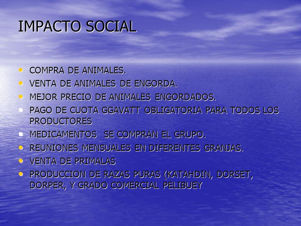 IMPACTO SOCIAL COMPRA DE ANIMALES. VENTA DE ANIMALES DE ENGORDA.