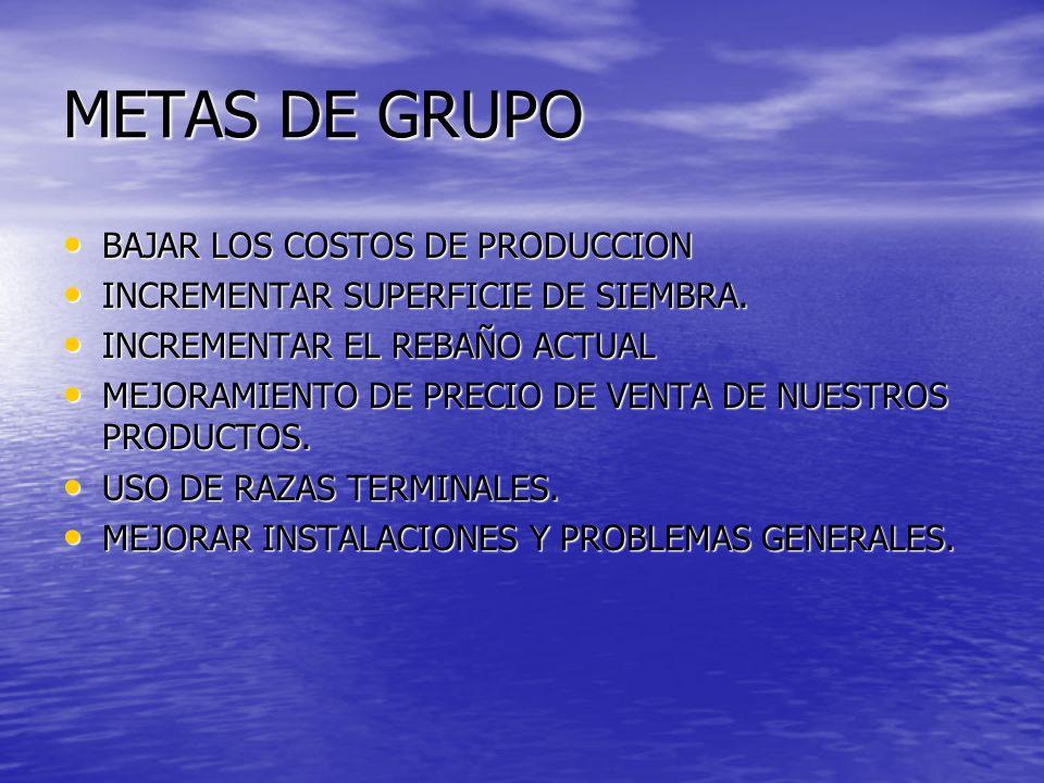 METAS DE GRUPO BAJAR LOS COSTOS DE PRODUCCION