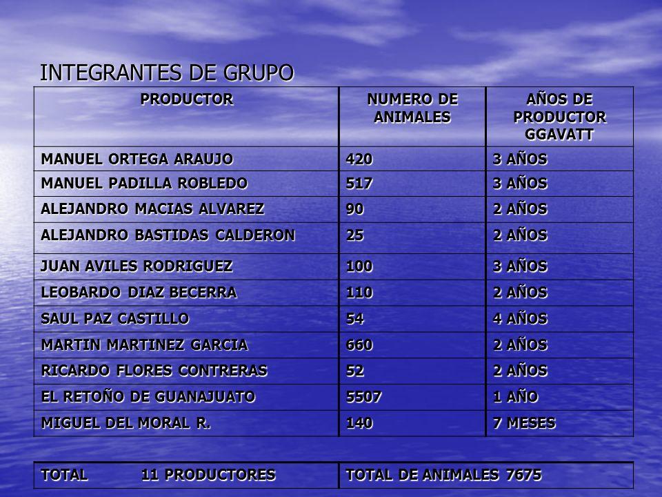 AÑOS DE PRODUCTOR GGAVATT