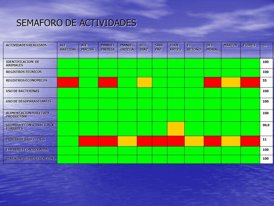 SEMAFORO DE ACTIVIDADES