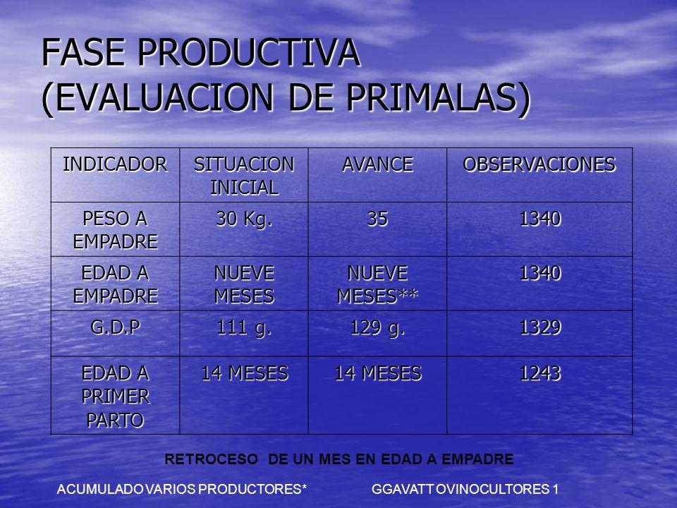 FASE PRODUCTIVA (EVALUACION DE PRIMALAS)