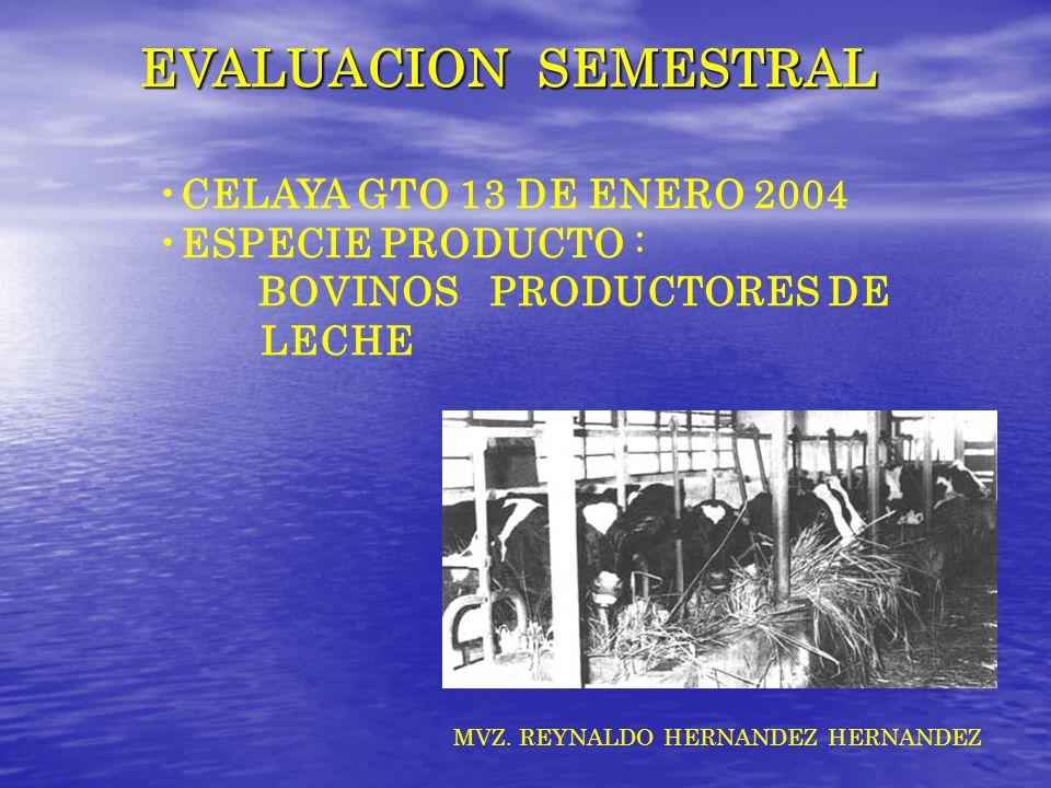 EVALUACION SEMESTRAL CELAYA GTO 13 DE ENERO 2004 ESPECIE PRODUCTO :