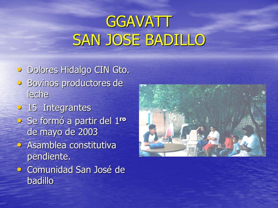 GGAVATT SAN JOSE BADILLO