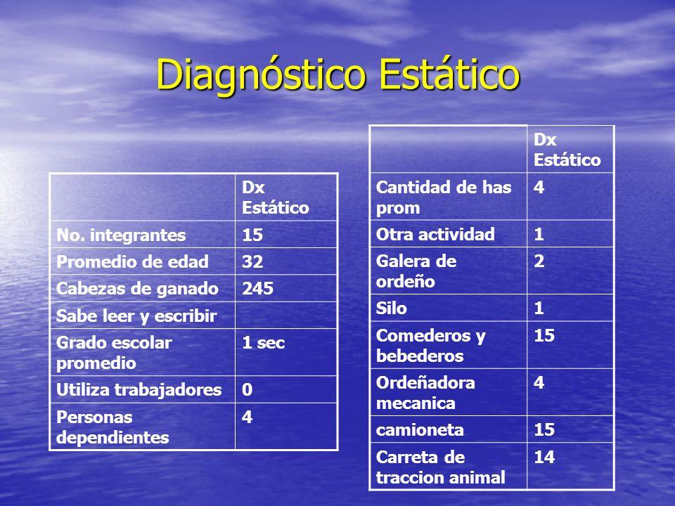 Diagnóstico Estático Dx Estático Cantidad de has prom 4 Otra actividad