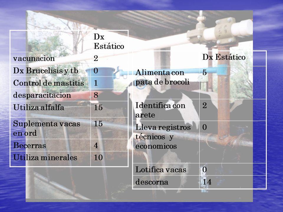 Dx Estático vacunacion. 2. Dx Brucelisis y tb. Control de mastitis. 1. desparacitacion. 8. Utiliza alfalfa.