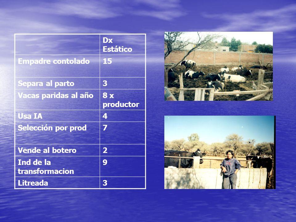 Dx Estático Empadre contolado. 15. Separa al parto. 3. Vacas paridas al año. 8 x productor. Usa IA.