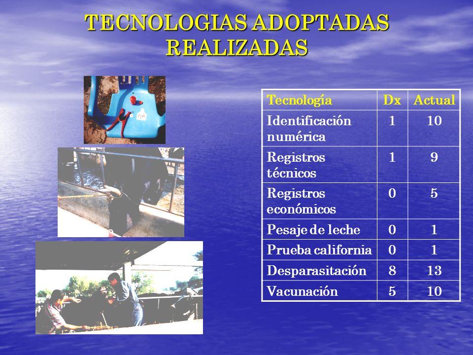 TECNOLOGIAS ADOPTADAS REALIZADAS