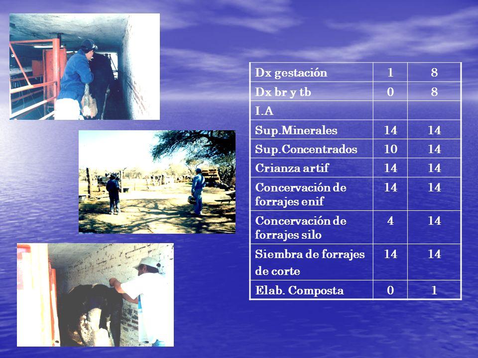 Dx gestación1. 8. Dx br y tb. I.A. Sup.Minerales. 14. Sup.Concentrados. 10. Crianza artif. Concervación de forrajes enif.