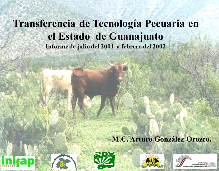 Transferencia de Tecnología Pecuaria en el Estado de Guanajuato