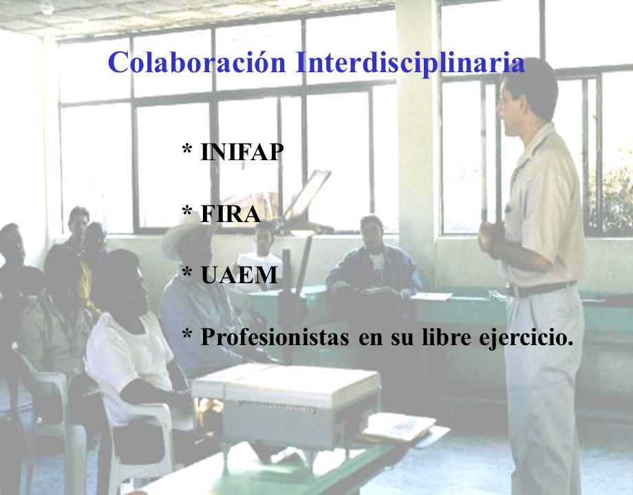 Colaboración Interdisciplinaria