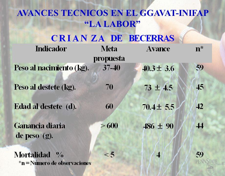 AVANCES TECNICOS EN EL GGAVAT-INIFAP LA LABOR