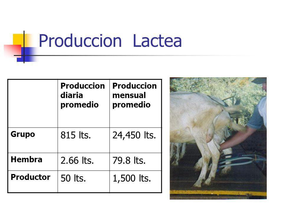 Produccion Lactea 815 lts. 24,450 lts. 2.66 lts. 79.8 lts. 50 lts.